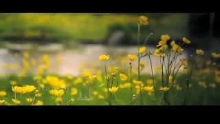 رَبِّي مَعِيْ | الشيخ حسين الأكرف