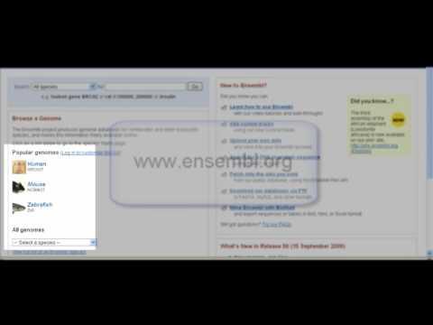 Ensembl Genome Browser