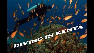Diving in Kenya    Shimoni reef