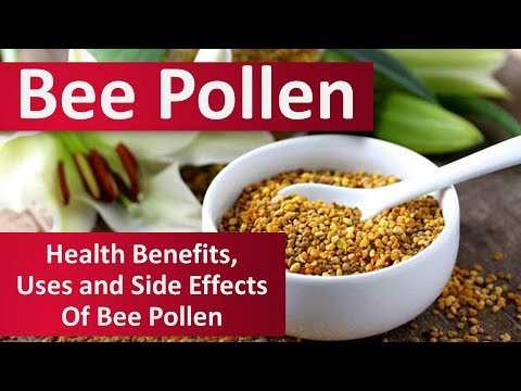 The Excitement About Bee Pollen