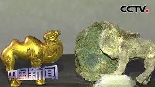 [中国新闻] 陕西:秦始皇陵园出土迄今最早的单体金银骆驼 | CCTV中文国际