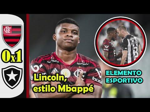 Melhores Momentos de BOTAFOGO  0 x 1 FLAMENGO / 31ª Rodada do Brasileirão ( 07-11-2019 )