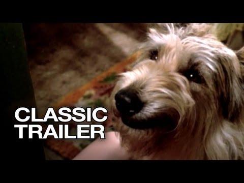Because of Winn-Dixie (2005) Official Trailer #1 - Jeff Daniels Movie HD