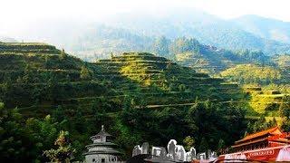 本期节目主要内容: 苗岭山脉,横亘于贵州东南部,因是苗族集中聚居区而...