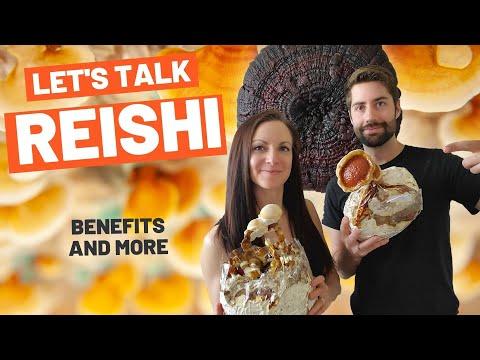 Reishi Mushroom Is So Freaking Cool (Ganoderma Lucidum) FreshCap Friday Live July 3, 2020