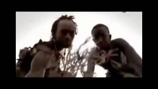 Documental ►El Homosapiens - La Evolución Perfecta