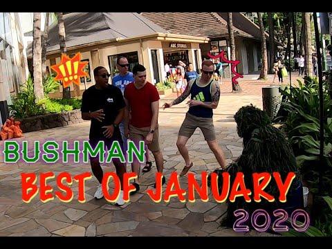 BUSHMAN BEST OF JANUARY 2020