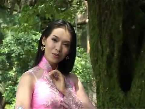 Liên Khúc Gợi Nhớ Quê  Hương - Đoàn Minh - Anh Thơ.flv