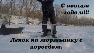 Ленок на мормышку с короедом Новогоднее обращение Зимняя рыбалка 2019 2020 Ловля ленка на пулю