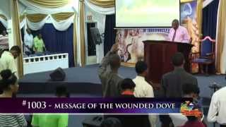 Message Of The Wounded Dove