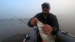 Вот это клёв .Рыбалка на Оке в дождь..Эта насадка ловит.