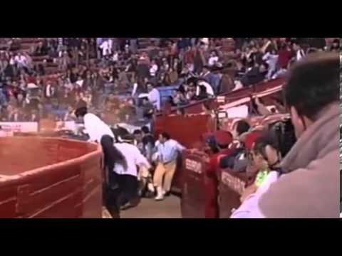 Wild Toro Spielautomat - wenn der Matador auftaucht