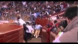 Stierkämpfe: Wenn der Bulle zurückschlägt