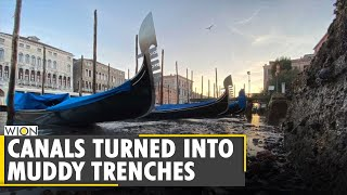 Exceptional low tide leaves canals almost empty in Venice | World | WION News screenshot 2