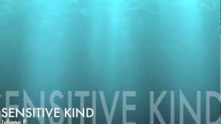 Sensitive Kind (J.J. Cale) with lyrics - cover by Juliano Alves Pinto