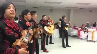 Mariachi Magnifico - Mariachi Bands Dallas TX