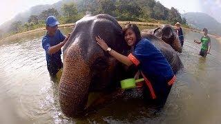 GoPro: Elephant Bath in Thailand