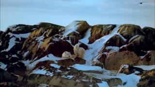 Аляска: Дух природы  (Alaska: Spirit of the Wild 1997)