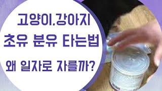 고양이,강아지 초유분유…