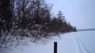 охота на Ямале петли на куропаток(, 2013-02-14T15:33:56.000Z)