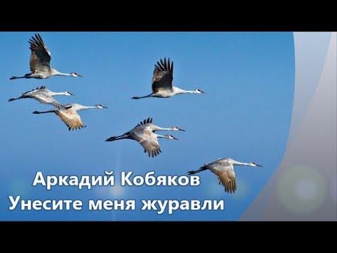 Аркадий Кобяков   Унесите меня журавли