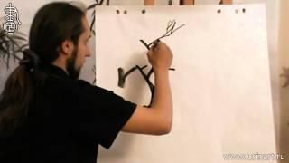 Обучение рисованию деревьев при помощи живописи у-син. Часть 1