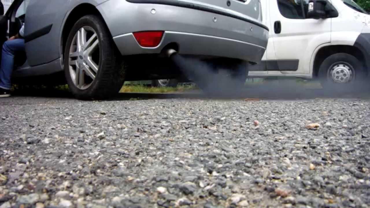 ford focus endura черный дым