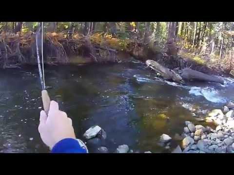 Fordyce Creek Fly Fishing - Long Version