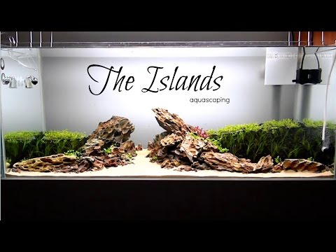 Aquascaping  THE ISLANDS