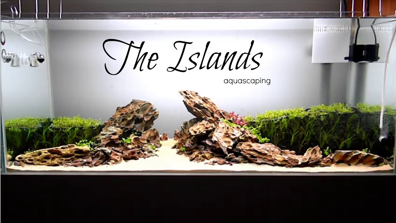 Aquascaping THE ISLANDS - YouTube