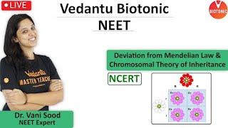 Mendelian Law and Chromosomal Theory Class 12 | NCERT | VBiotonic