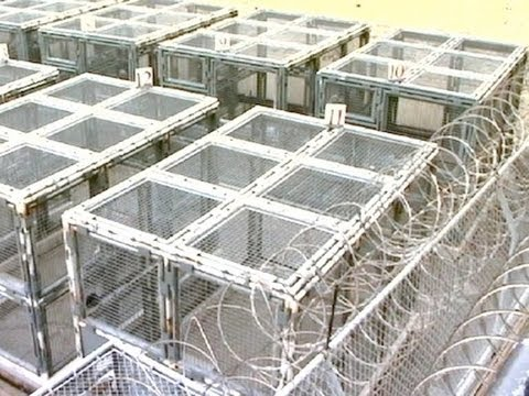 Crowded Prisons, Unions, and CA Three Strikes: Why We Can't Just Build More Cages