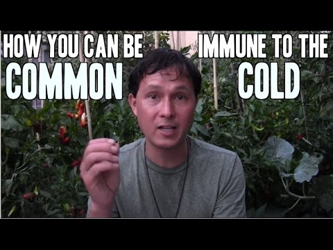 How you can be Immune to the Common Cold & More Raw Food FAQ