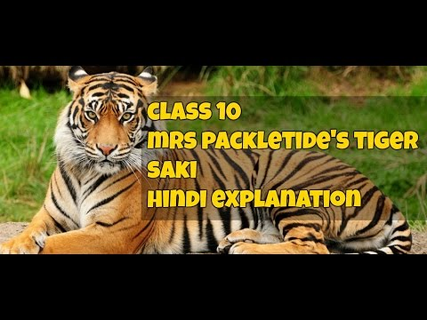 a character sketch of mrs packletide of mrs packletides tiger To obtain the tiger skin mrspackletide goes to extreme lengths  the author makes fun of each character and situation  bio sketch uploaded by rahul.