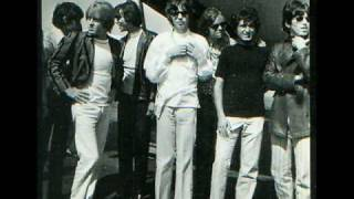 The Standells Cover The Rolling Stones 19th Nervous Breakdown