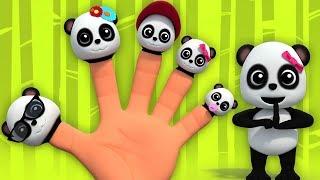 панда палец семья   маленькая панда   Panda Finger Family   русский мультфильмы для детей