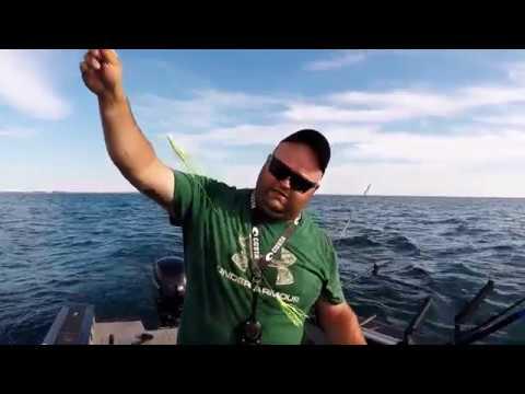 Ludington Lake Michigan Salmon Fishing (small Boat) July 2017