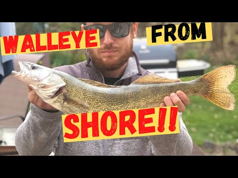 DETROIT RIVER Walleye Fishing From Shore(May 8th 2020 Fishing Report)