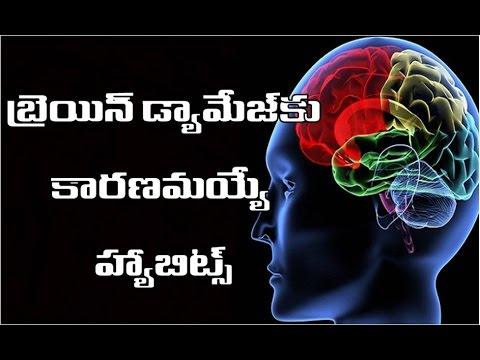 ఖచ్చితంగా నివారించాల్సిన బ్రెయిన్ డ్యామేజింగ్ హ్యాబిట్స్ | kachitamga nivarinche  brain damage ?