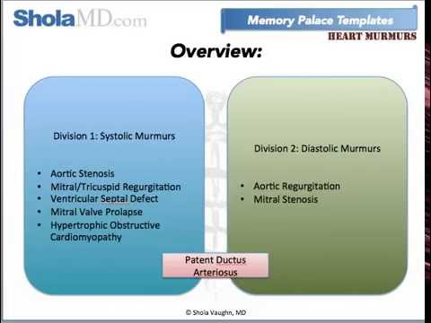 How to Memorize Heart Murmurs with the Memory Palace