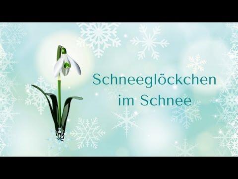 """""""schneeglÖckchen-im-schnee""""-(kita)"""