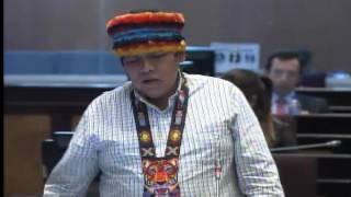 Sesión 420 del Pleno (22-11-2016)