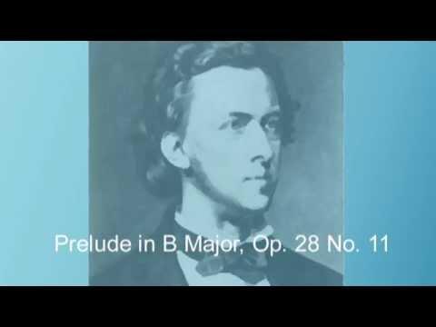 Chopin - Preludes  Op 28 - Nocturnes, Op 55 & 62 (by Ramon Schwarzkopf )