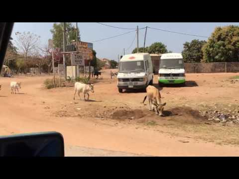 Drive from Kotu to Banjul Airport, The Gambia - 27th April 2016