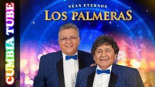 Los Palmeras - Sean Eternos Los Palmeras | Disco Completo Cumbia Tube