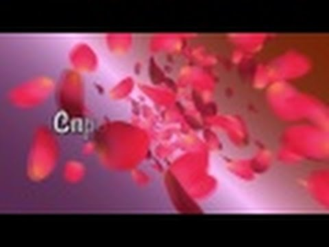 Варикозная болезнь (варикоз) - причины, симптомы