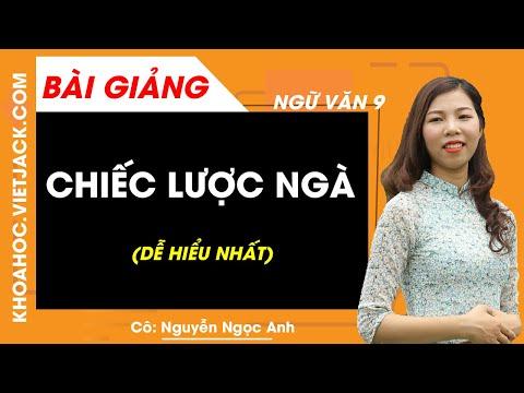 Chiếc lược ngà - Ngữ văn 9 - Cô Nguyễn Ngọc Anh (DỄ HIỂU NHẤT)