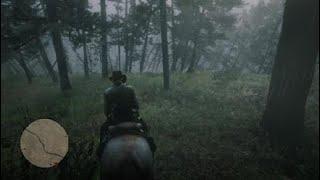 Une c'est écrasé pres de moi Red Dead Redemption 2