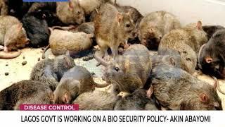 Disease Control: Lagos working on bio security policy - Akin Abayomi