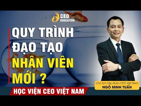 Cách Đào Tạo Nhân Viên Mới Vào Công Ty Như Thế Nào???   Ngô Minh Tuấn   Học Viện CEO Việt Nam